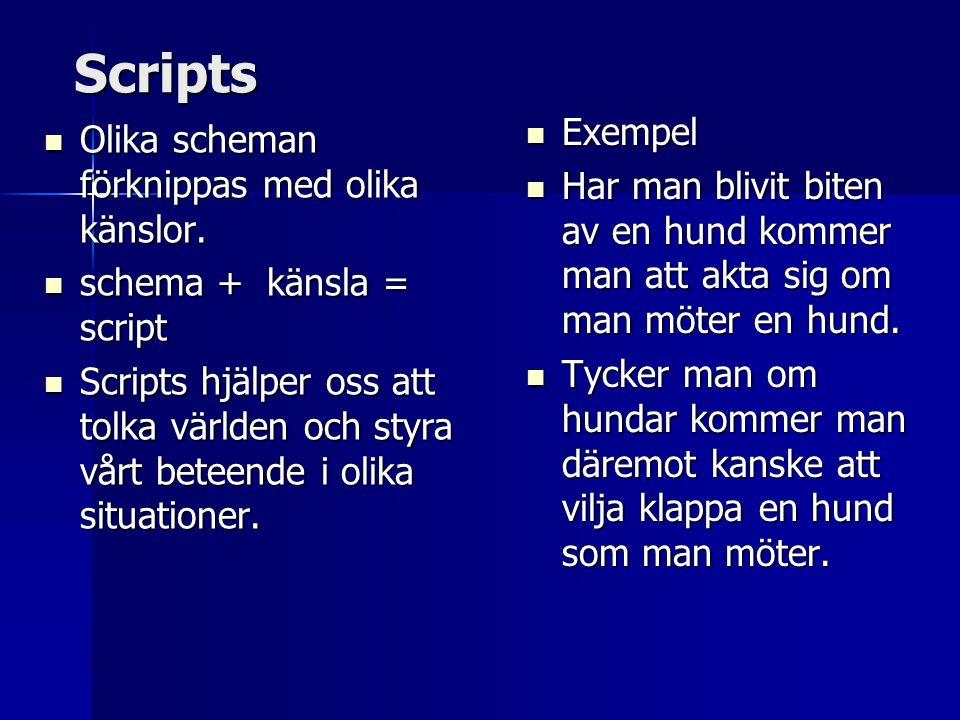 Scripts  Olika scheman förknippas med olika känslor.  schema + känsla = script  Scripts hjälper oss att tolka världen och styra vårt beteende i oli