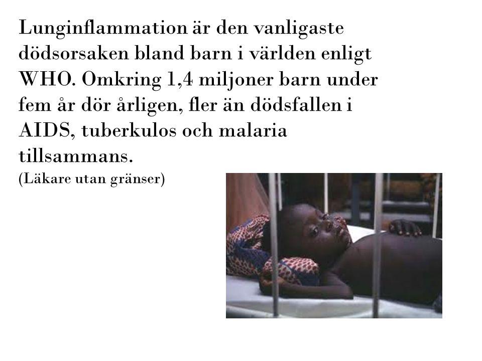 Riktlinjer finns nu för behandling av –bakteriell öroninflammation (AOM) från 2000 (reviderat 2010) –tonsillit från 2001 (revideras 2012) –bihåleinflammation (sinuit) från 2004 –Mjukdelsinfektioner från 2009