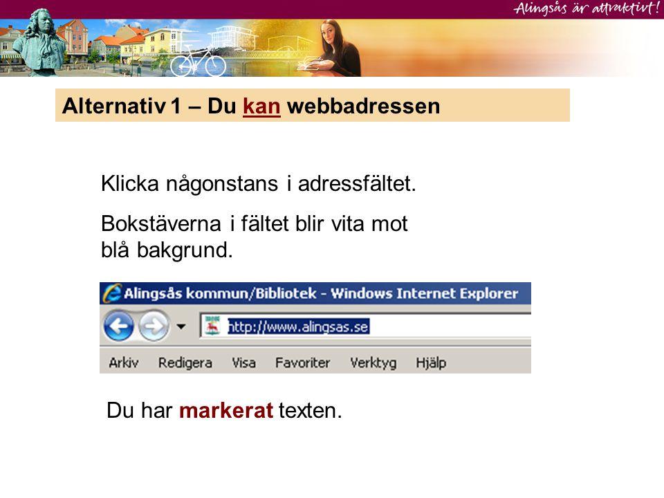Alternativ 1 – Du kan webbadressen Klicka någonstans i adressfältet. Bokstäverna i fältet blir vita mot blå bakgrund. Du har markerat texten.