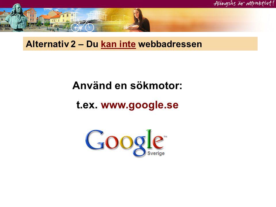 Alternativ 2 – Du kan inte webbadressen Använd en sökmotor: t.ex. www.google.se