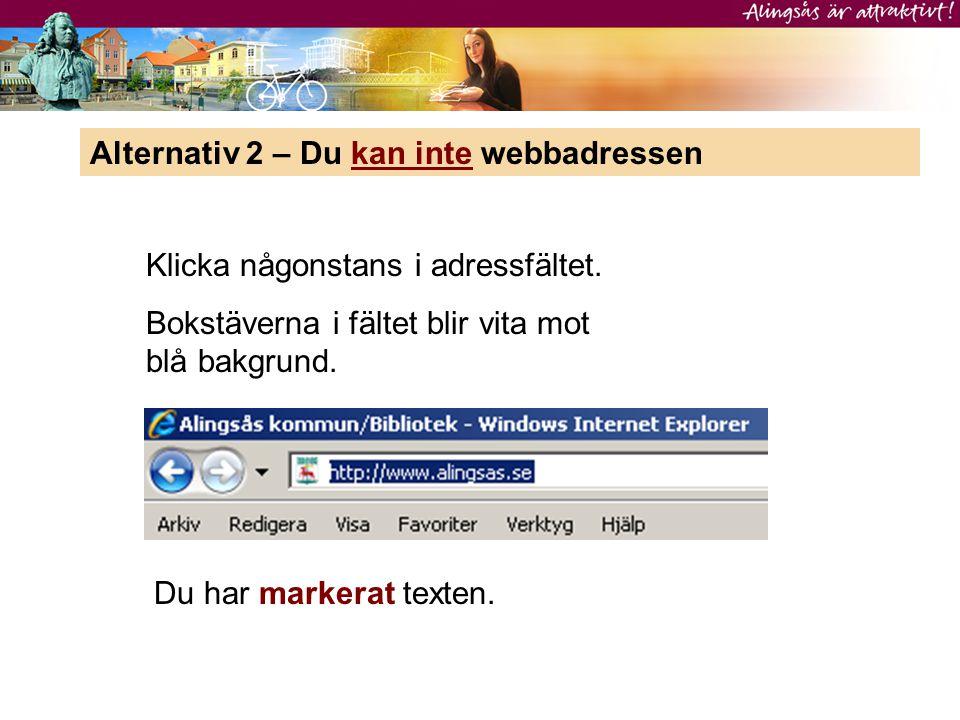 Alternativ 2 – Du kan inte webbadressen Klicka någonstans i adressfältet. Bokstäverna i fältet blir vita mot blå bakgrund. Du har markerat texten.