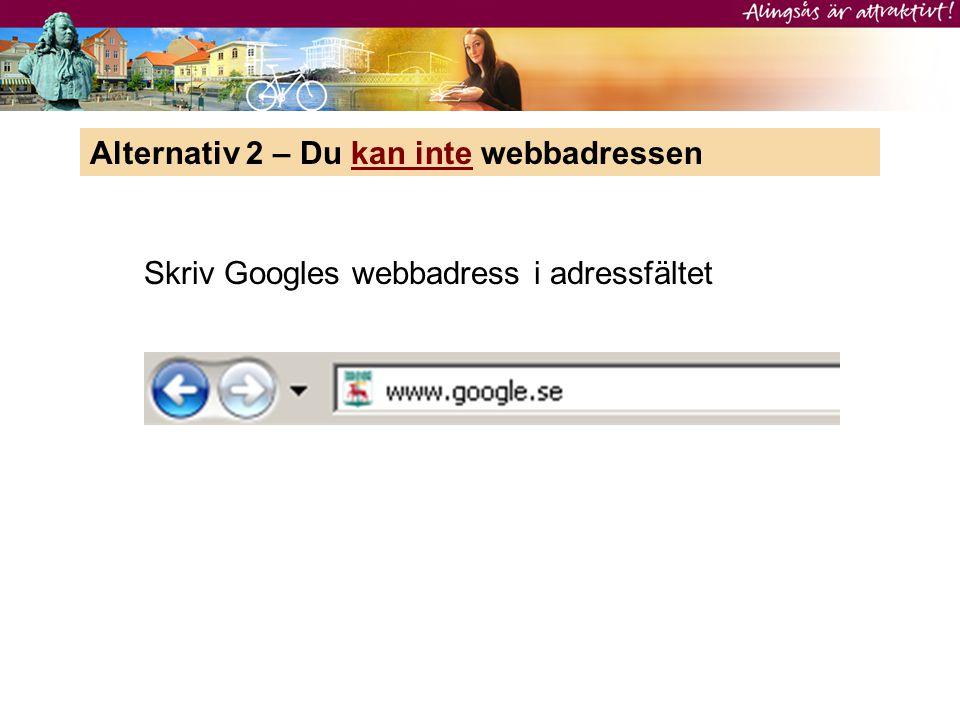 Alternativ 2 – Du kan inte webbadressen Skriv Googles webbadress i adressfältet