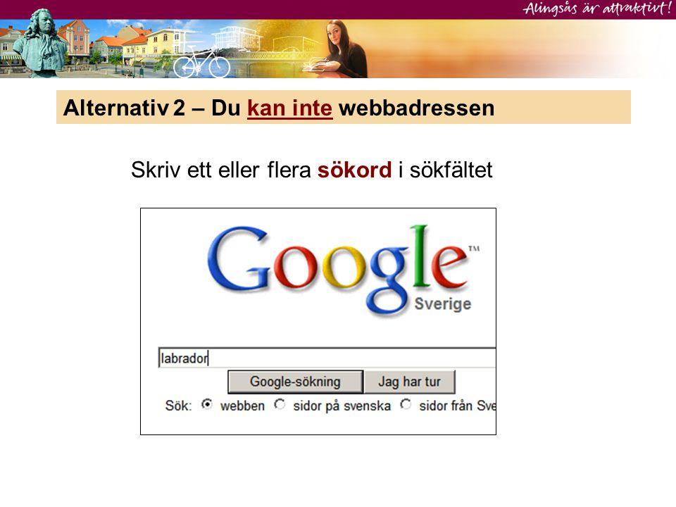 Alternativ 2 – Du kan inte webbadressen Skriv ett eller flera sökord i sökfältet