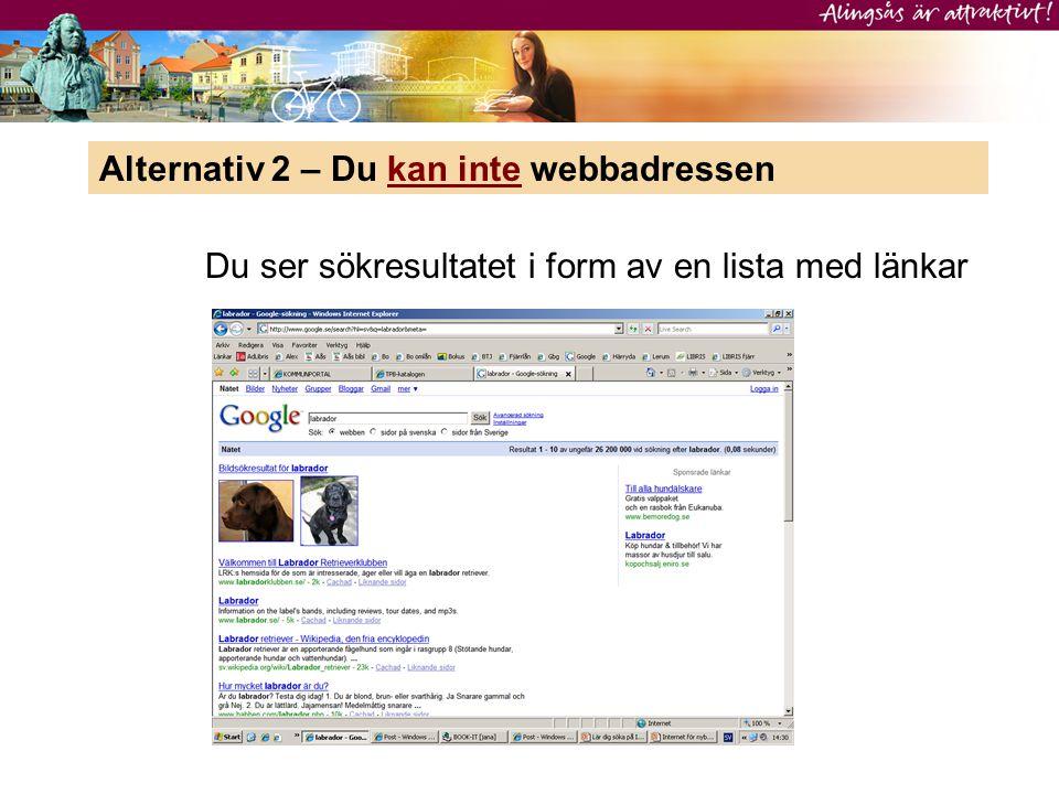 Alternativ 2 – Du kan inte webbadressen Du ser sökresultatet i form av en lista med länkar