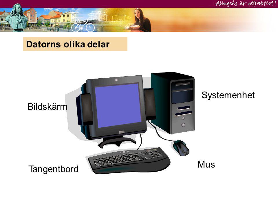 Datorns olika delar Bildskärm Systemenhet Tangentbord Mus