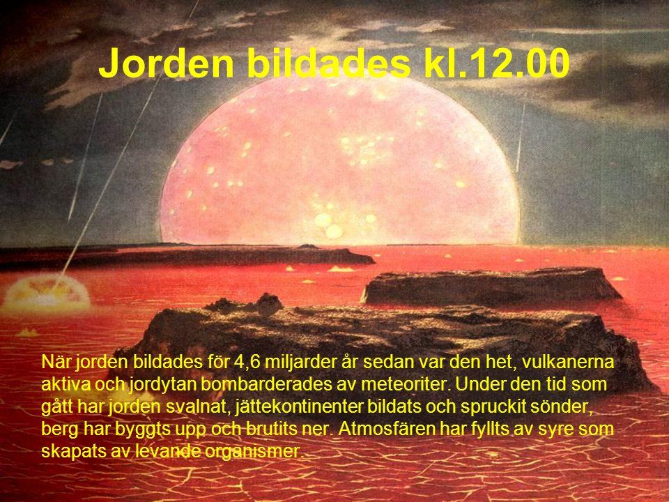 När jorden bildades för 4,6 miljarder år sedan var den het, vulkanerna aktiva och jordytan bombarderades av meteoriter.