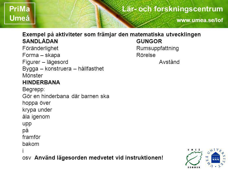Lär- och forskningscentrum www.umea.se/lof PriMa Umeå Exempel på aktiviteter som främjar den matematiska utvecklingen SANDLÅDANGUNGOR FöränderlighetRu