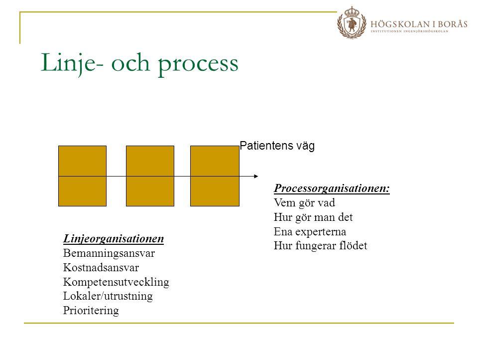Linje- och process Patientens väg Linjeorganisationen Bemanningsansvar Kostnadsansvar Kompetensutveckling Lokaler/utrustning Prioritering Processorgan