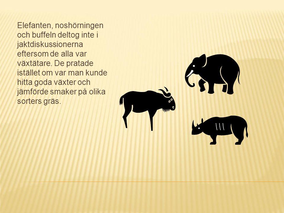 Elefanten, noshörningen och buffeln deltog inte i jaktdiskussionerna eftersom de alla var växtätare. De pratade istället om var man kunde hitta goda v