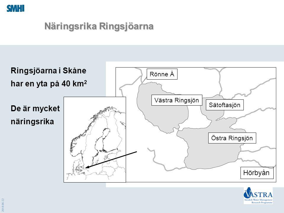 2014-06-22 Näringsrika Ringsjöarna Ringsjöarna i Skåne har en yta på 40 km 2 Sätoftasjön Västra Ringsjön Östra Ringsjön Rönne Å De är mycket näringsri