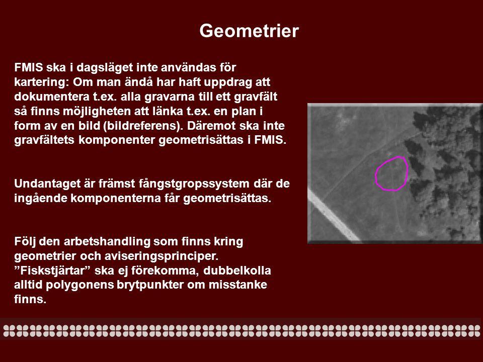 Geometrier FMIS ska i dagsläget inte användas för kartering: Om man ändå har haft uppdrag att dokumentera t.ex. alla gravarna till ett gravfält så fin
