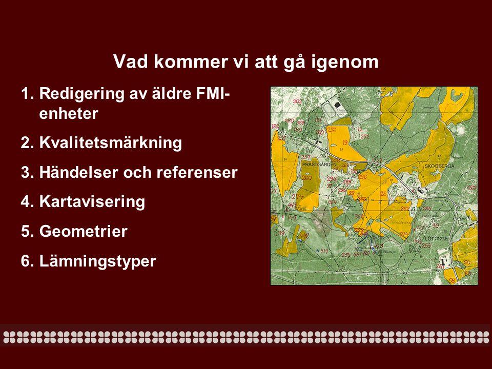 Geometrier FMIS ska i dagsläget inte användas för kartering: Om man ändå har haft uppdrag att dokumentera t.ex.