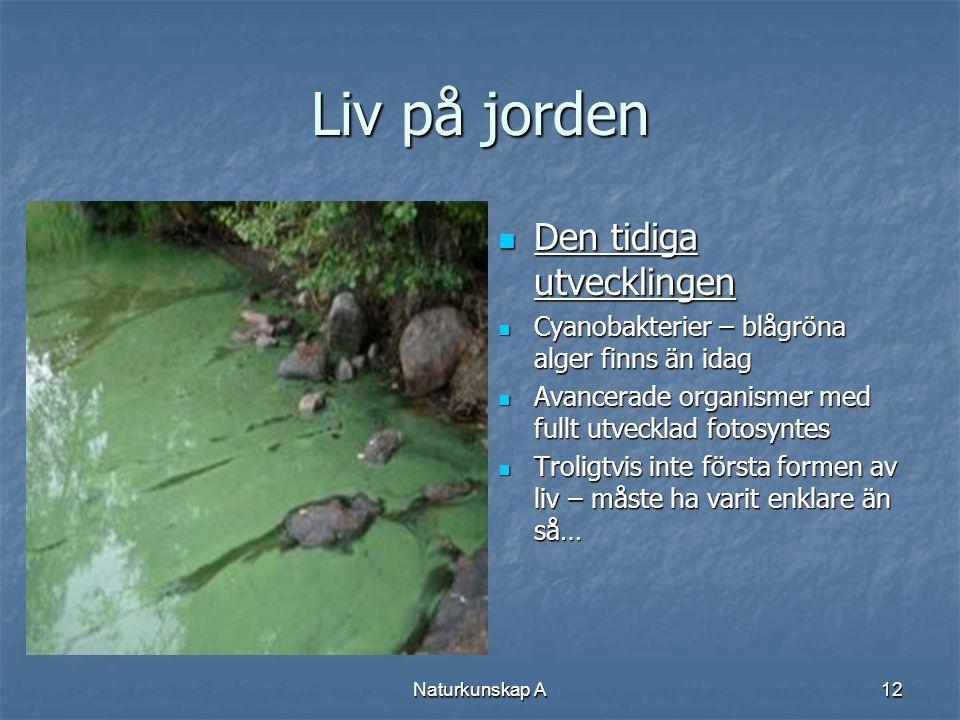 Naturkunskap A12 Liv på jorden  Den tidiga utvecklingen  Cyanobakterier – blågröna alger finns än idag  Avancerade organismer med fullt utvecklad f
