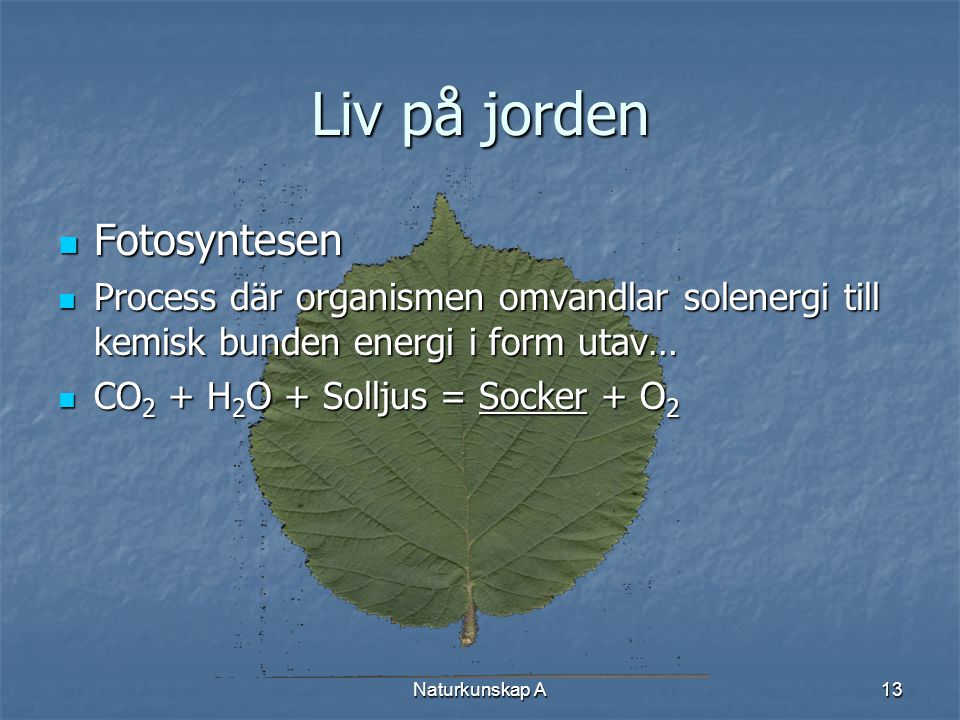 Naturkunskap A13 Liv på jorden  Fotosyntesen  Process där organismen omvandlar solenergi till kemisk bunden energi i form utav…  CO 2 + H 2 O + Sol