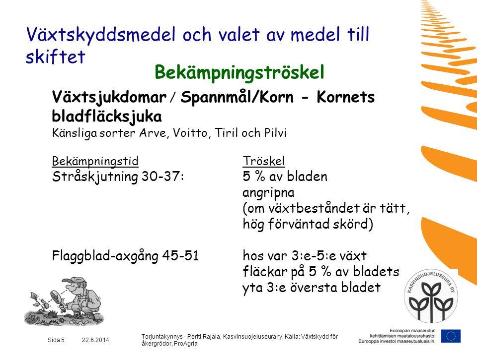 Torjuntakynnys - Pertti Rajala, Kasvinsuojeluseura ry, Källa: Växtskydd för åkergrödor, ProAgria Sida 6 22.6.2014 Växtskyddsmedel och valet av medel till skiftet Bekämpningströskel Växtsjukdomar / Spannmål/Korn - Kornets sköldfläcksjuka Känsliga sorter: Olavi, Minttu, Rolfi (korn) Kier, Whalet, Riihi ja Picasso (råg) BekämpningstidTröskel Stråskjutningen 30-37  5 % av bladen angripna till axgång 51: på tredje översta bladet på var 3:e-5:e planta (om tätt bestånd, hög förväntad skörd, regnigt väder och känslig sort)