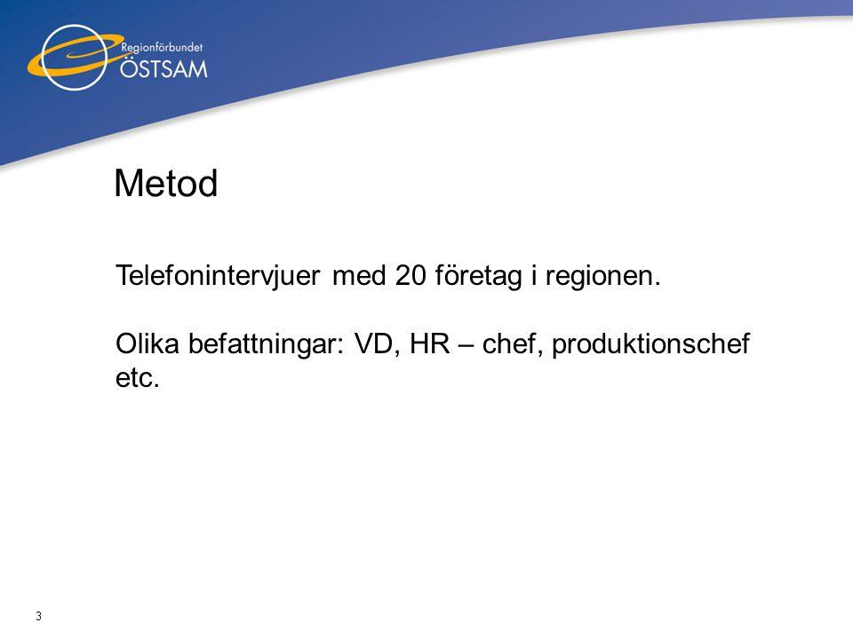 3 Metod Telefonintervjuer med 20 företag i regionen. Olika befattningar: VD, HR – chef, produktionschef etc.