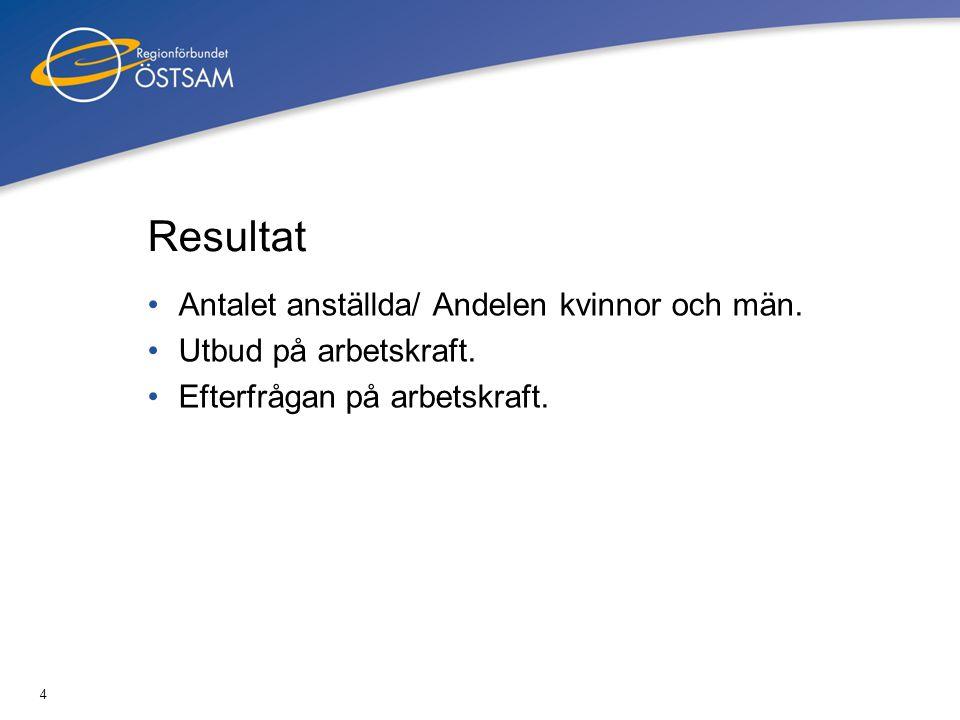 4 Resultat •Antalet anställda/ Andelen kvinnor och män. •Utbud på arbetskraft. •Efterfrågan på arbetskraft.