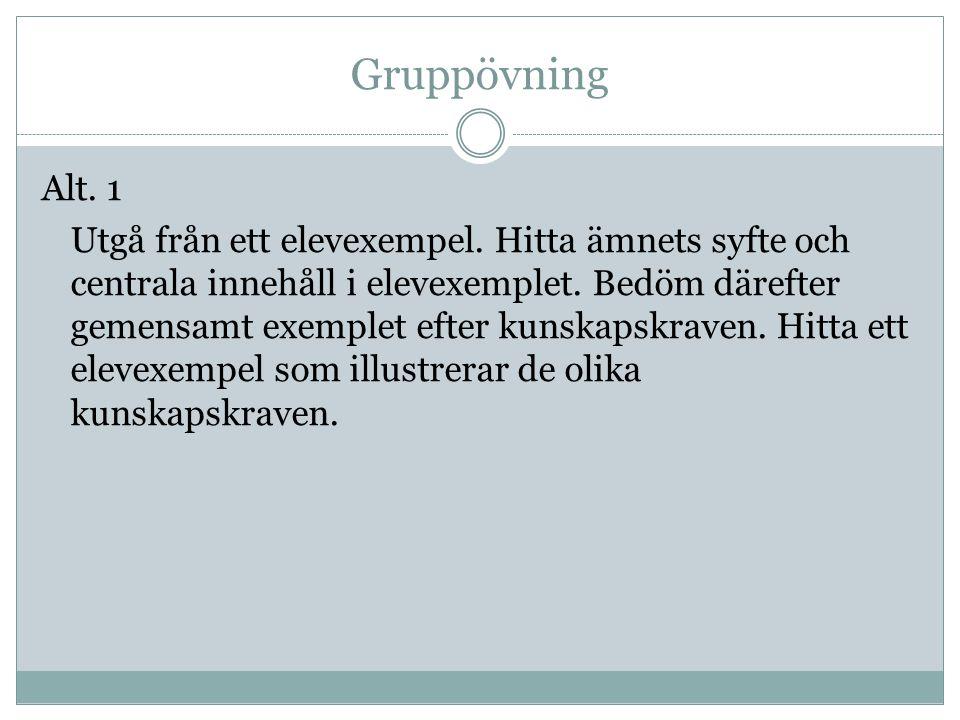 Gruppövning Alt.1 Utgå från ett elevexempel.