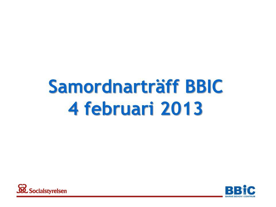 Samordnarträff BBIC 4 februari 2013