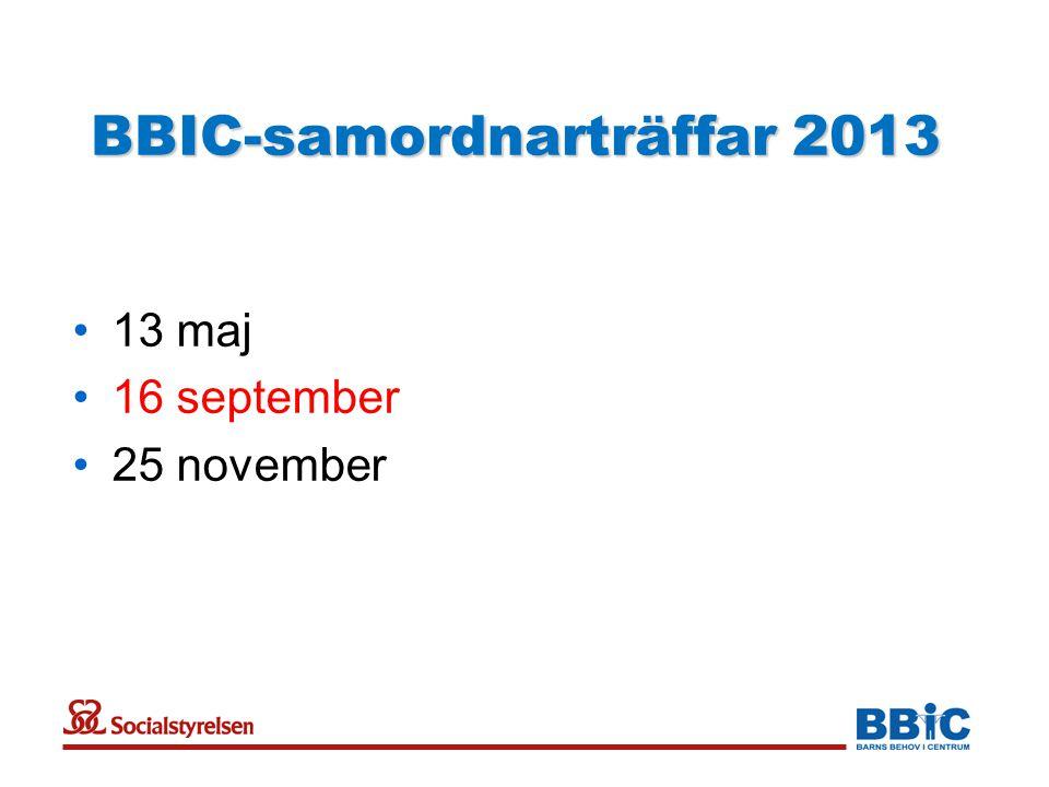 BBIC-samordnarträffar 2013 •13 maj •16 september •25 november