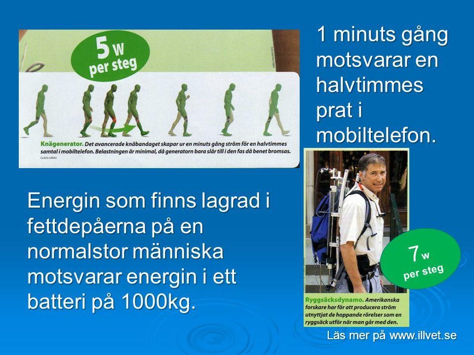 7 w per steg Energin som finns lagrad i fettdepåerna på en normalstor människa motsvarar energin i ett batteri på 1000kg. 1 minuts gång motsvarar en h