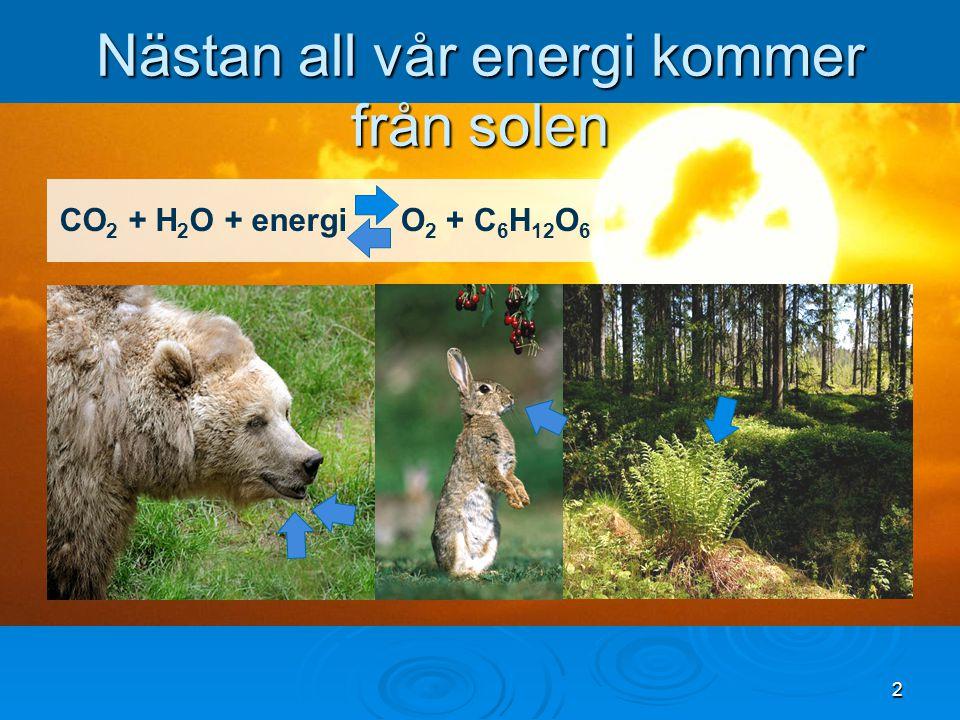 2 Nästan all vår energi kommer från solen CO 2 + H 2 O + energiO 2 + C 6 H 12 O 6