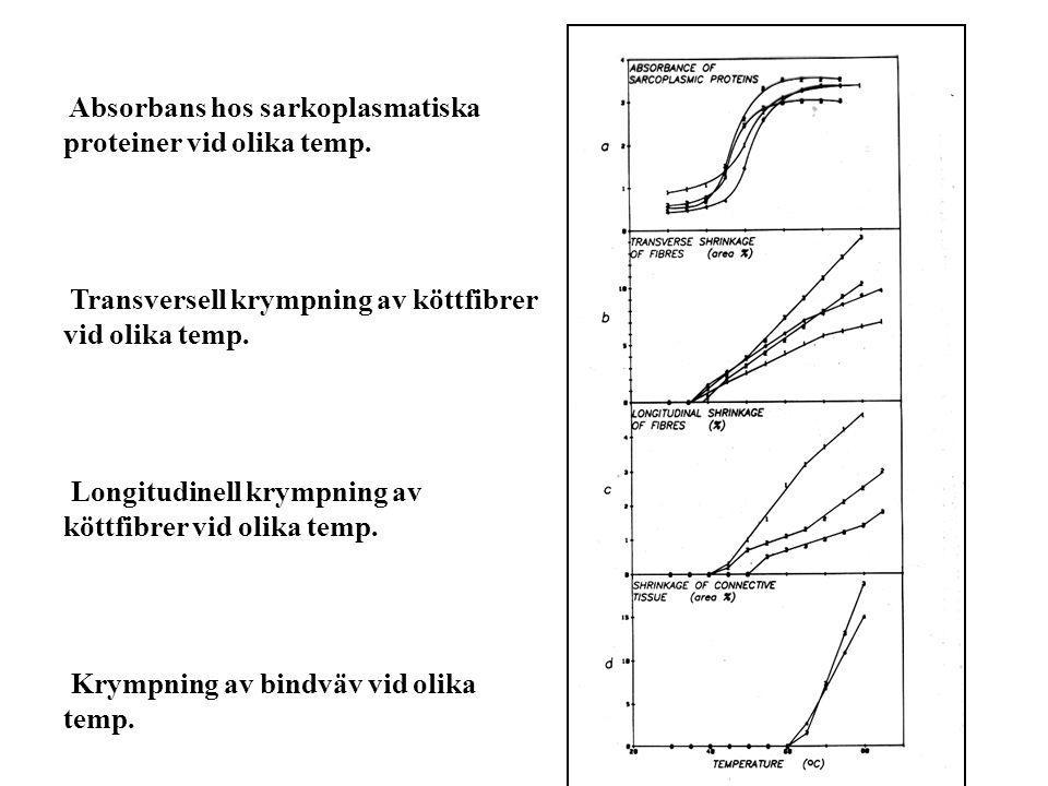 Absorbans hos sarkoplasmatiska proteiner vid olika temp. Transversell krympning av köttfibrer vid olika temp. Longitudinell krympning av köttfibrer vi
