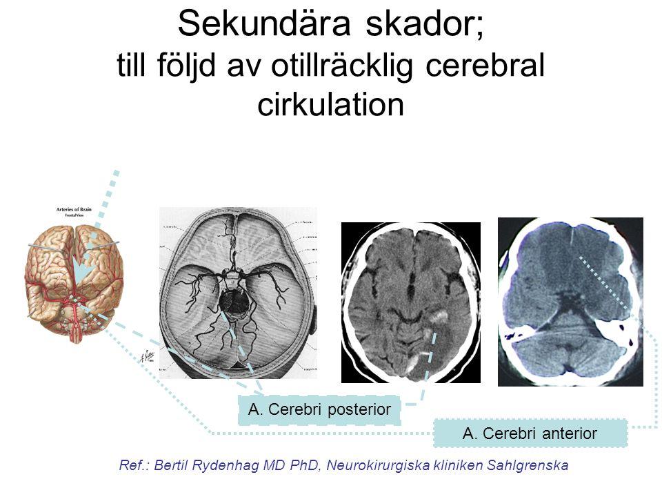 Sekundära skador; till följd av otillräcklig cerebral cirkulation A. Cerebri anterior A. Cerebri posterior Ref.: Bertil Rydenhag MD PhD, Neurokirurgis