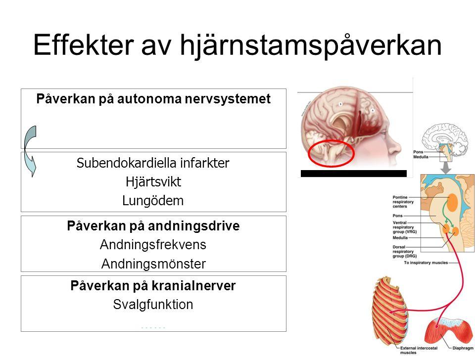Effekter av hjärnstamspåverkan Påverkan på autonoma nervsystemet Subendokardiella infarkter Hjärtsvikt Lungödem Påverkan på andningsdrive Andningsfrek