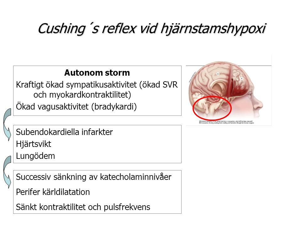 Cushing´s reflex vid hjärnstamshypoxi Autonom storm Kraftigt ökad sympatikusaktivitet (ökad SVR och myokardkontraktilitet) Ökad vagusaktivitet (bradyk