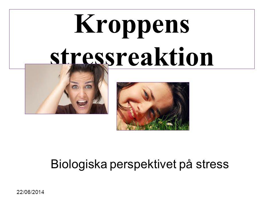 Kroppens stressreaktion Biologiska perspektivet på stress 22/06/2014