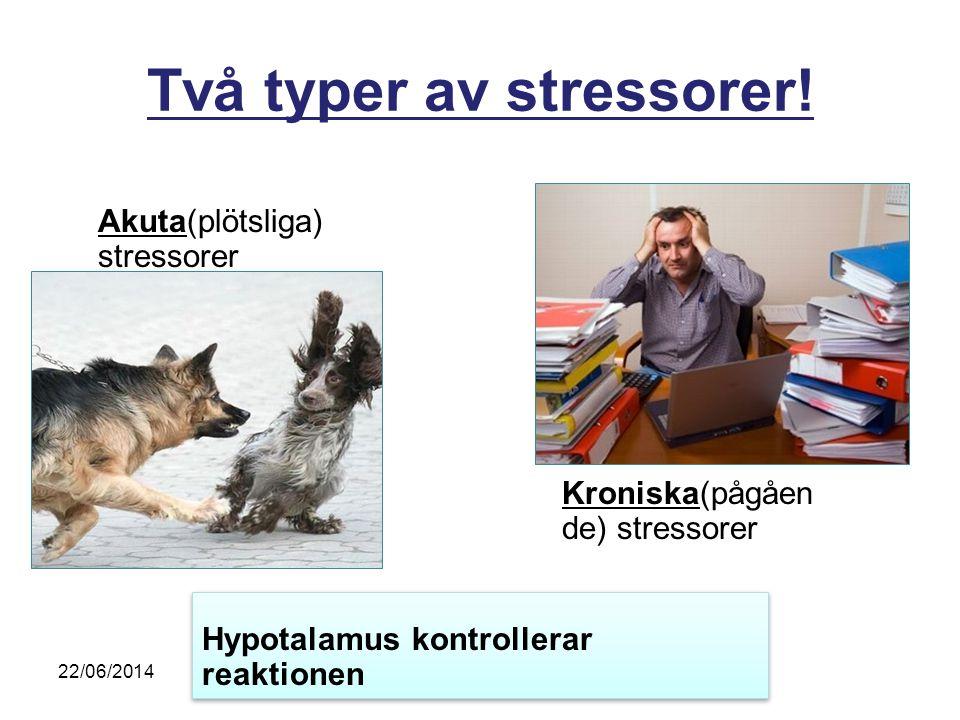 Två typer av stressorer! Akuta(plötsliga) stressorer Kroniska(pågåen de) stressorer Hypotalamus kontrollerar reaktionen 22/06/2014