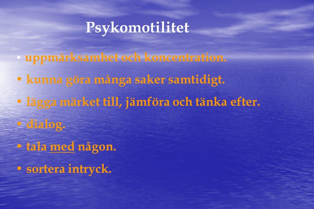 Psykomotilitet • uppmärksamhet och koncentration.• kunna göra många saker samtidigt.
