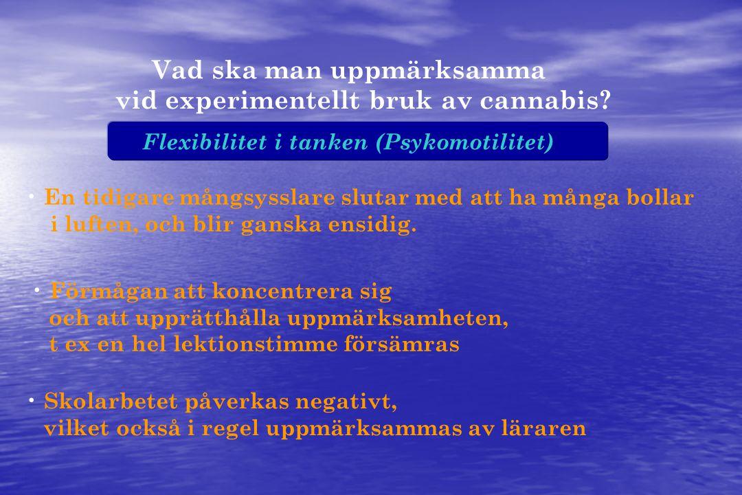 Flexibilitet i tanken (Psykomotilitet) Vad ska man uppmärksamma vid experimentellt bruk av cannabis.