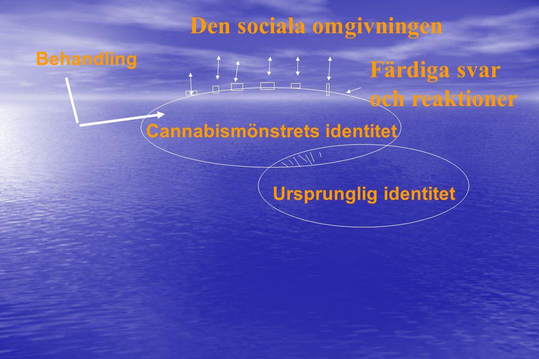 Cannabismönstrets identitet Ursprunglig identitet Behandling Färdiga svar och reaktioner Den sociala omgivningen