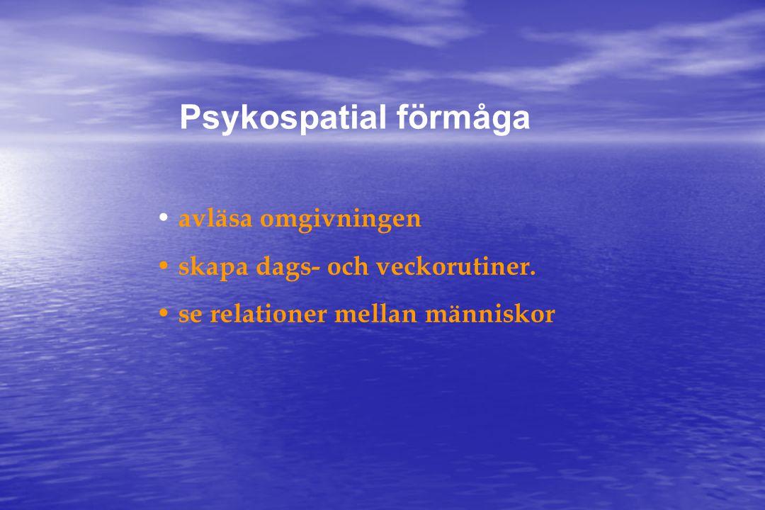 Psykospatial förmåga • avläsa omgivningen • skapa dags- och veckorutiner.