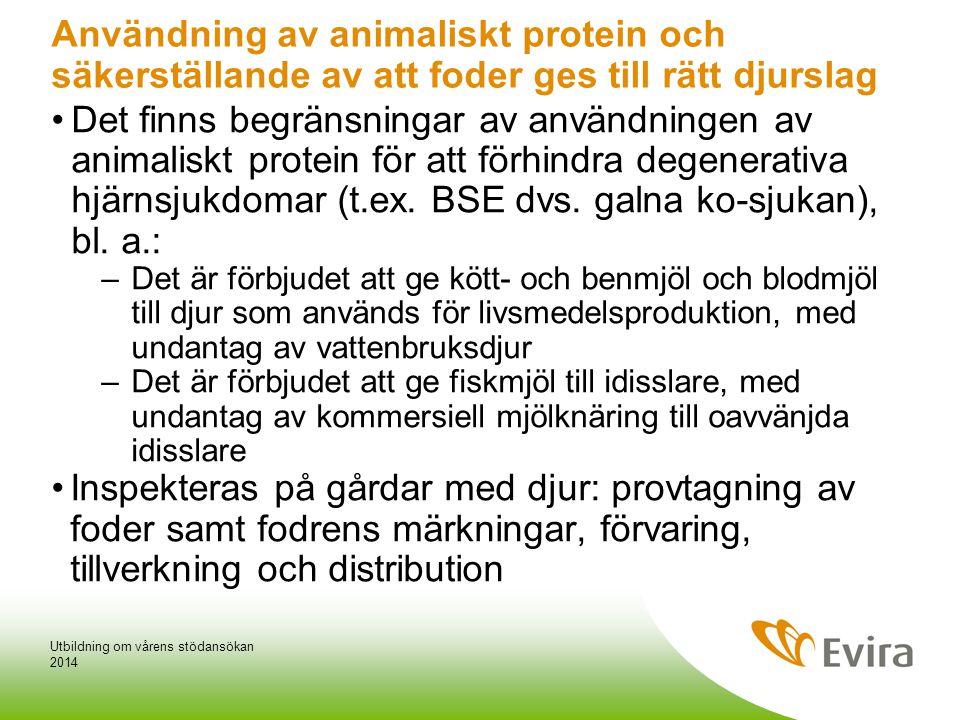 Användning av animaliskt protein och säkerställande av att foder ges till rätt djurslag •Det finns begränsningar av användningen av animaliskt protein för att förhindra degenerativa hjärnsjukdomar (t.ex.