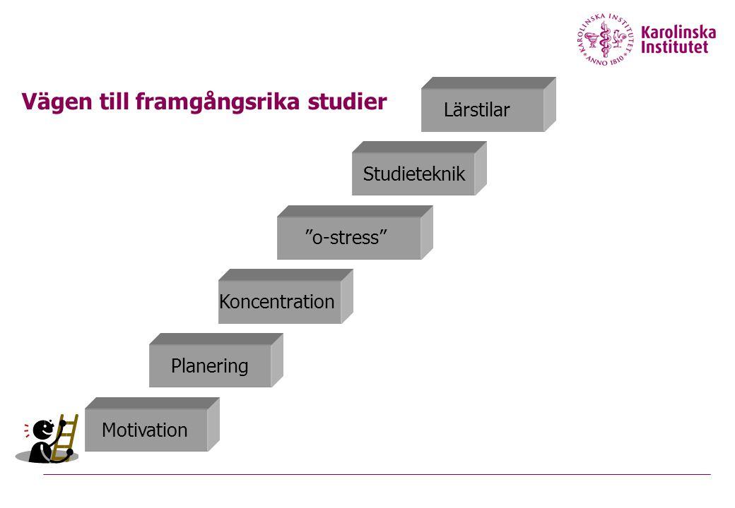 """Vägen till framgångsrika studier Planering Motivation Koncentration """"o-stress"""" Studieteknik Lärstilar"""