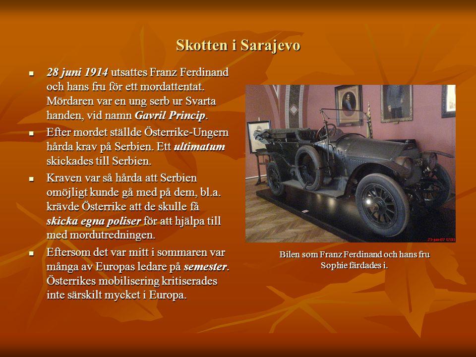 Skotten i Sarajevo  28 juni 1914 utsattes Franz Ferdinand och hans fru för ett mordattentat. Mördaren var en ung serb ur Svarta handen, vid namn Gavr