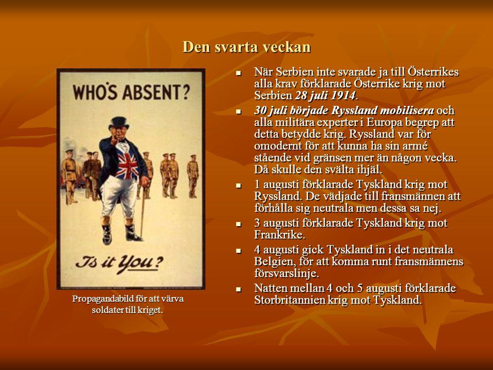 Den svarta veckan  När Serbien inte svarade ja till Österrikes alla krav förklarade Österrike krig mot Serbien 28 juli 1914.  30 juli började Ryssla