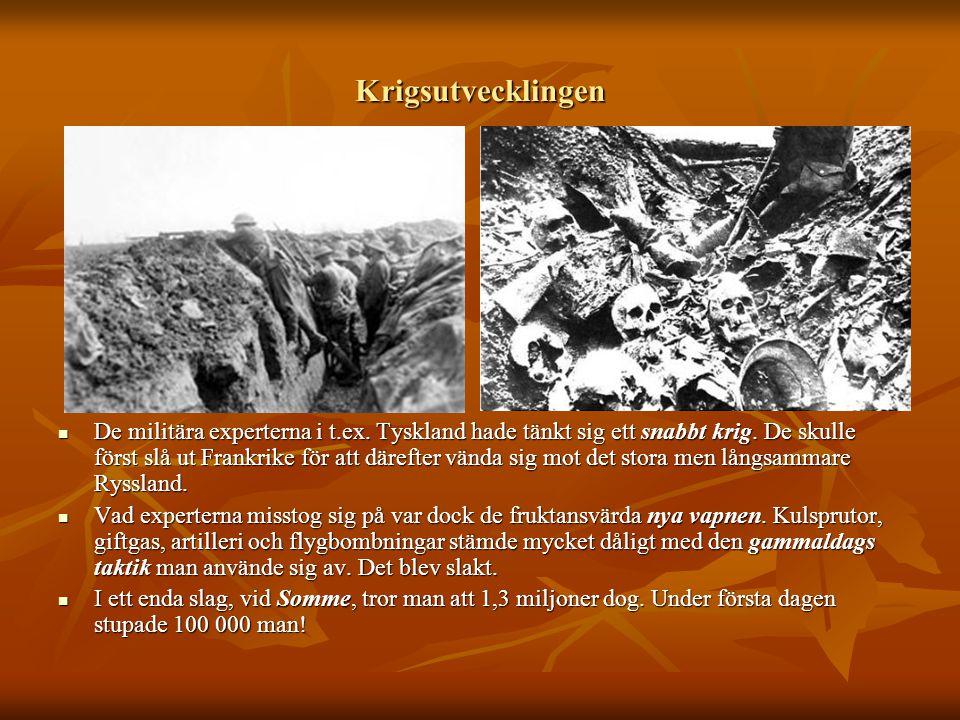 Krigsutvecklingen  De militära experterna i t.ex. Tyskland hade tänkt sig ett snabbt krig. De skulle först slå ut Frankrike för att därefter vända si