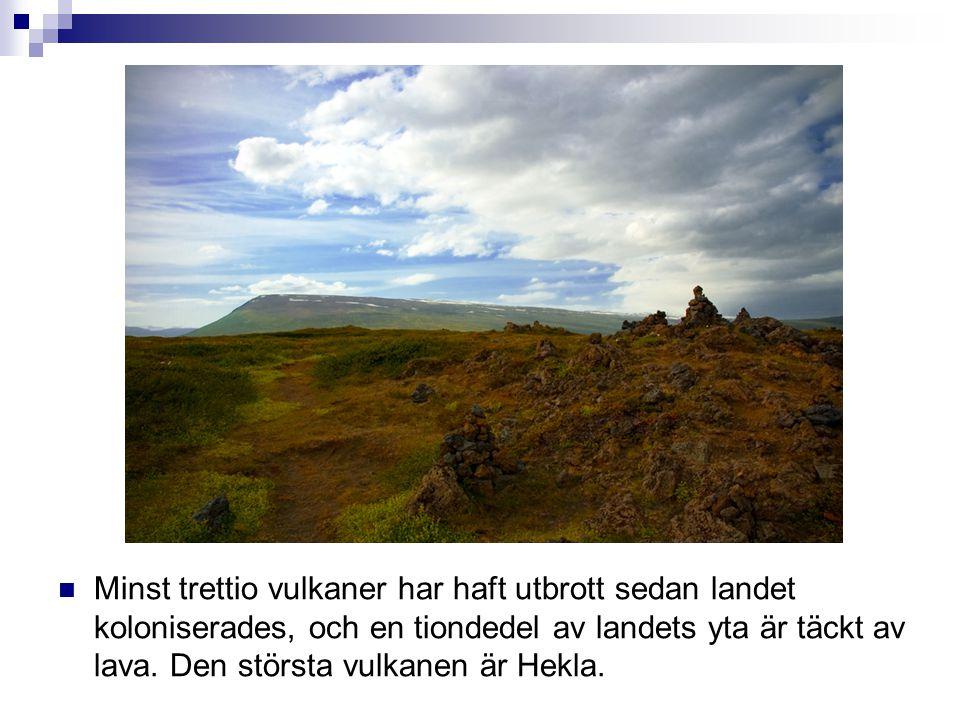  Minst trettio vulkaner har haft utbrott sedan landet koloniserades, och en tiondedel av landets yta är täckt av lava. Den största vulkanen är Hekla.