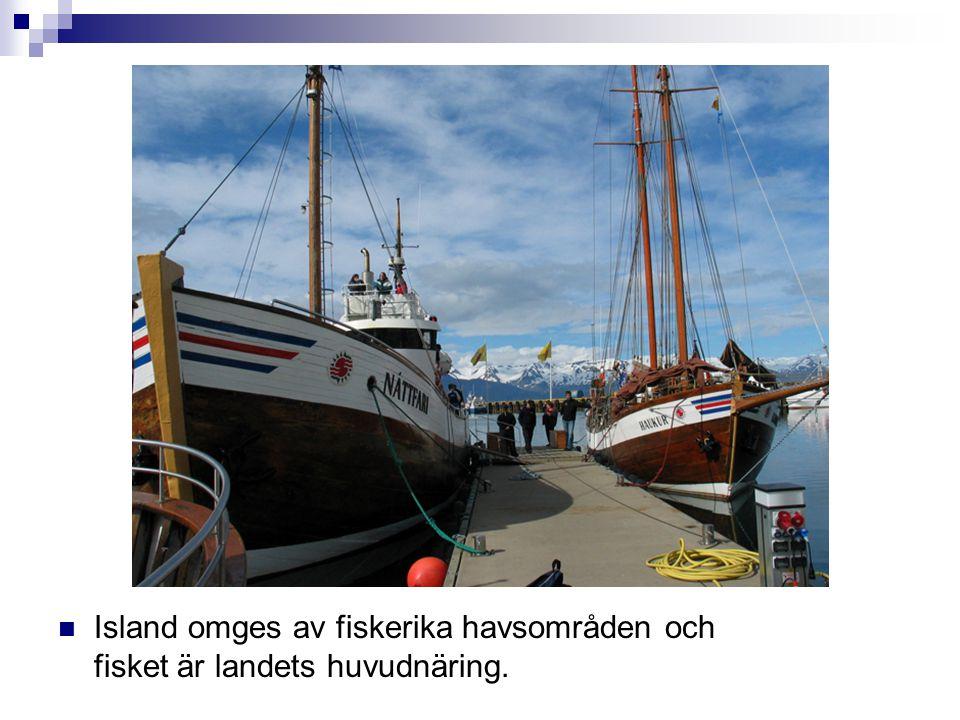  Island omges av fiskerika havsområden och fisket är landets huvudnäring.