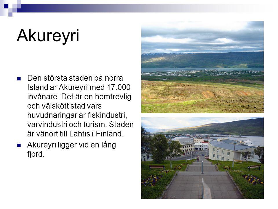 Akureyri  Den största staden på norra Island är Akureyri med 17.000 invånare. Det är en hemtrevlig och välskött stad vars huvudnäringar är fiskindust