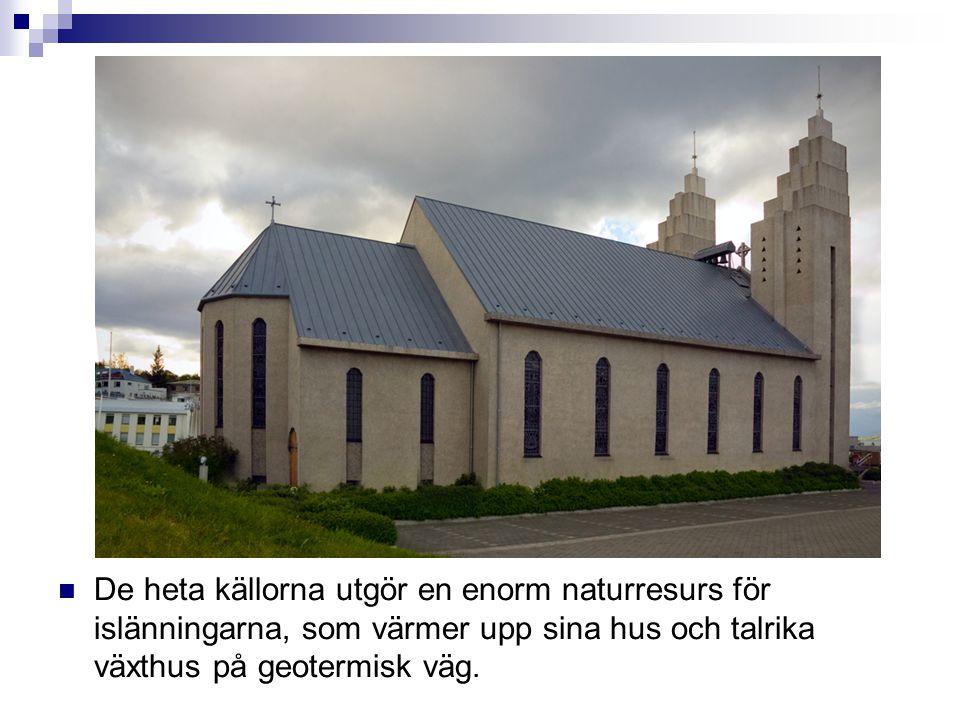  De heta källorna utgör en enorm naturresurs för islänningarna, som värmer upp sina hus och talrika växthus på geotermisk väg.