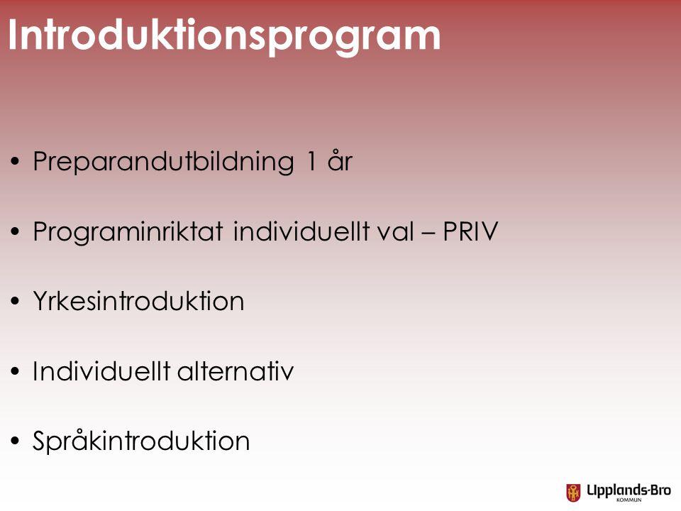 Introduktionsprogram •Preparandutbildning 1 år •Programinriktat individuellt val – PRIV •Yrkesintroduktion •Individuellt alternativ •Språkintroduktion