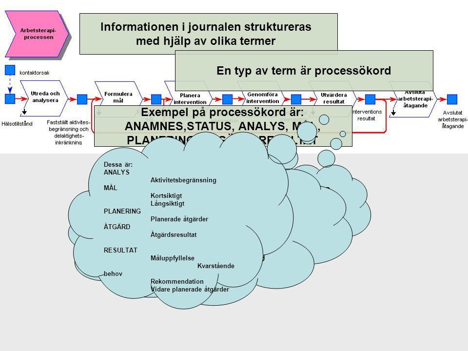 Informationen i journalen struktureras med hjälp av olika termer Exempel på processökord är: ANAMNES,STATUS, ANALYS, MÅL, PLANERING, ÅTGÄRD, RESULTAT