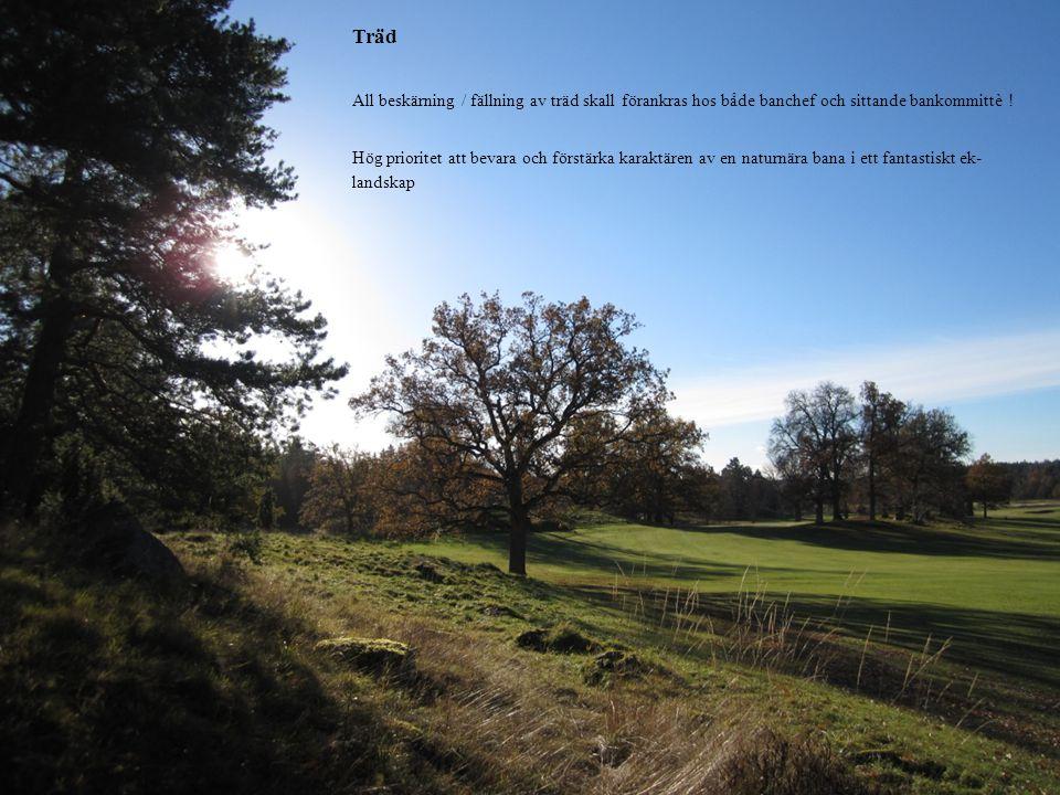Träd All beskärning / fällning av träd skall förankras hos både banchef och sittande bankommittè ! Hög prioritet att bevara och förstärka karaktären a