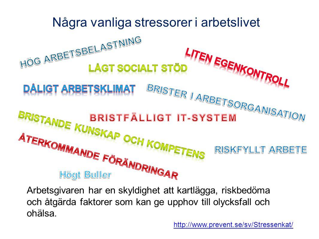 Några vanliga stressorer i arbetslivet Arbetsgivaren har en skyldighet att kartlägga, riskbedöma och åtgärda faktorer som kan ge upphov till olycksfal