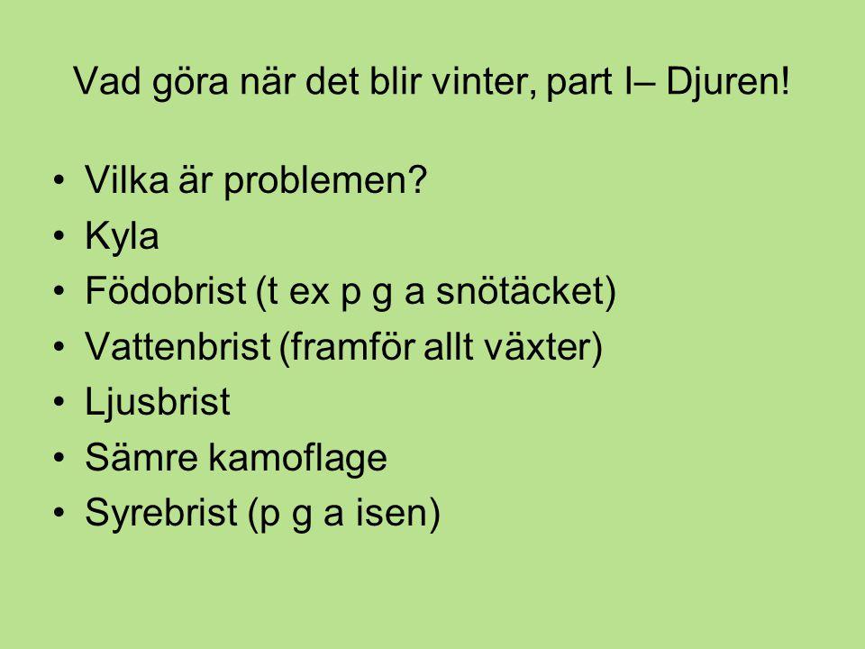Vad göra när det blir vinter, part I– Djuren.•Vilka är problemen.